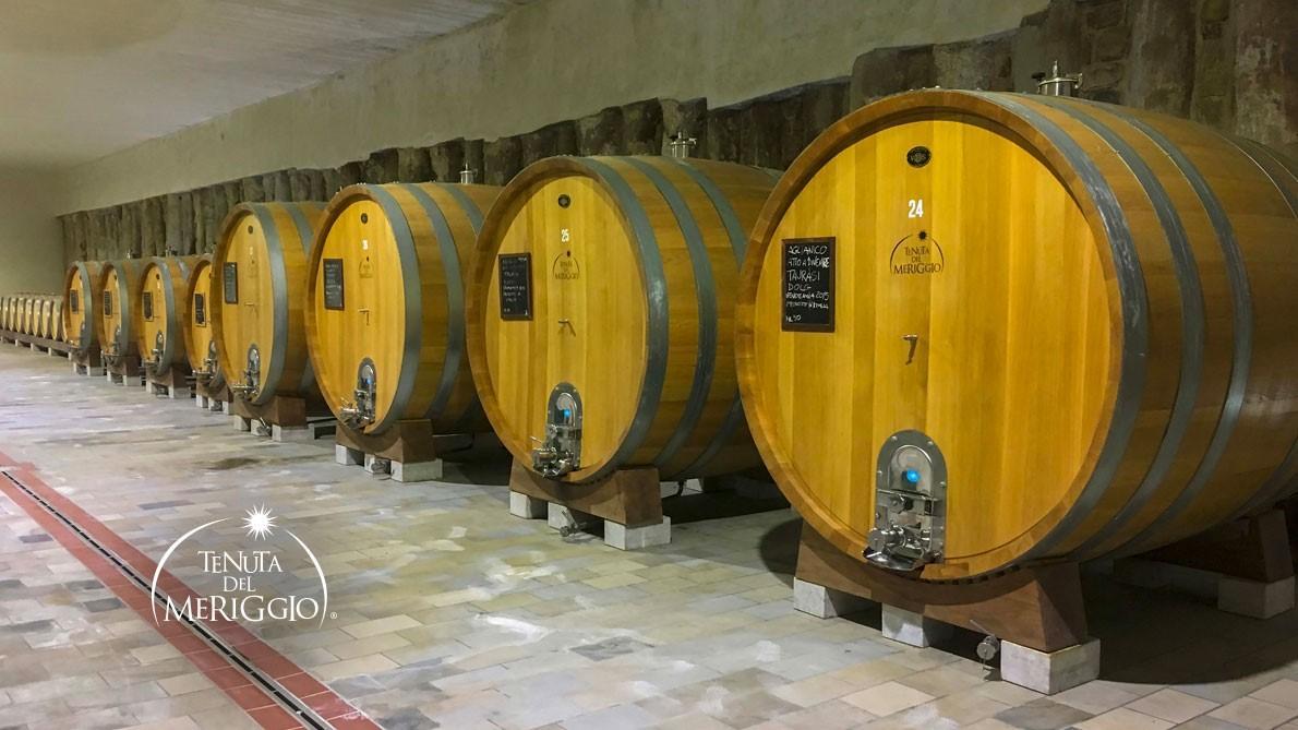Percorso degustazione vini d'Irpinia